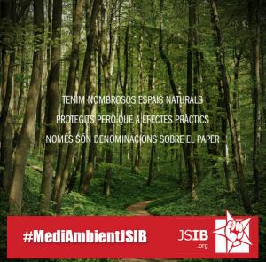 #MediAmbientJSIB